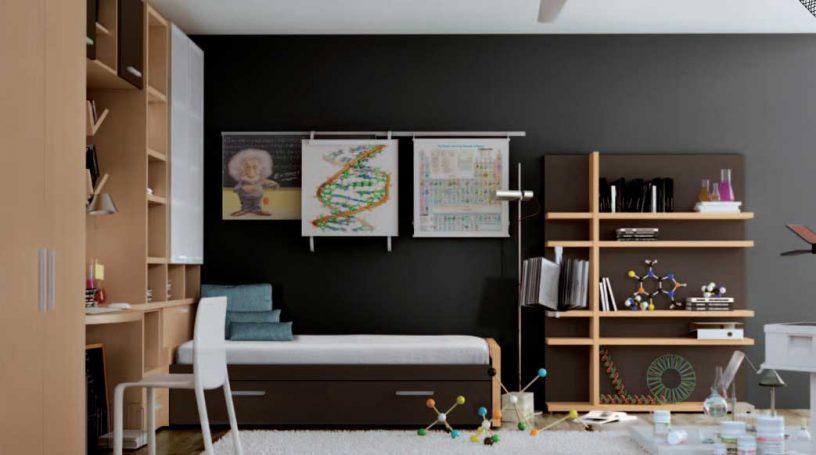 Genius Kids Room with Einstein Poster