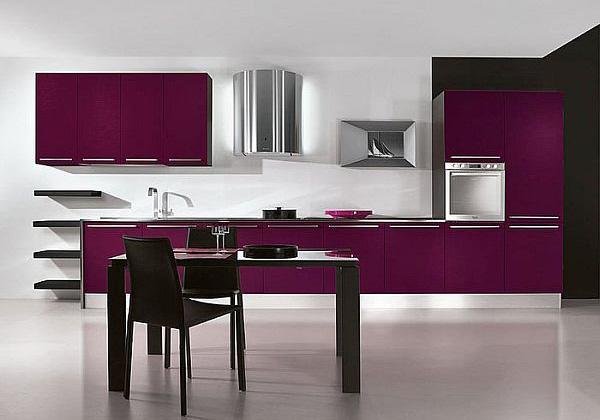Modern Purple Kitchen with Appliances