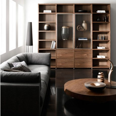 Awesome Living Room Couch with Bookshelves