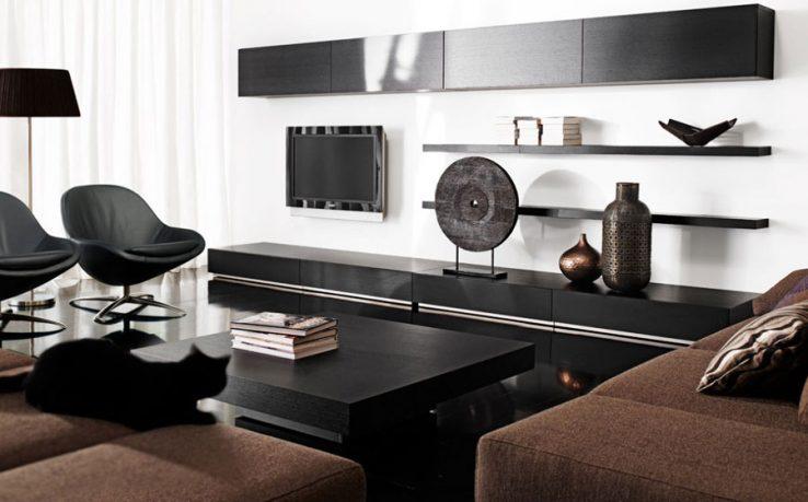 Elegant Black and White Living Room Decorations