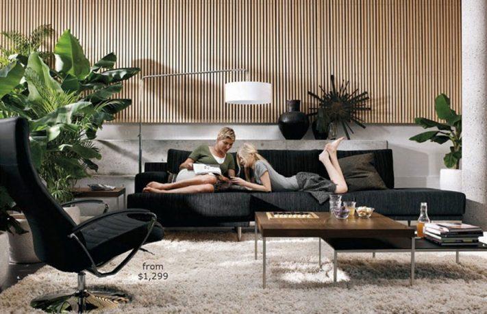 Fresh Living Room Plants Decorotions