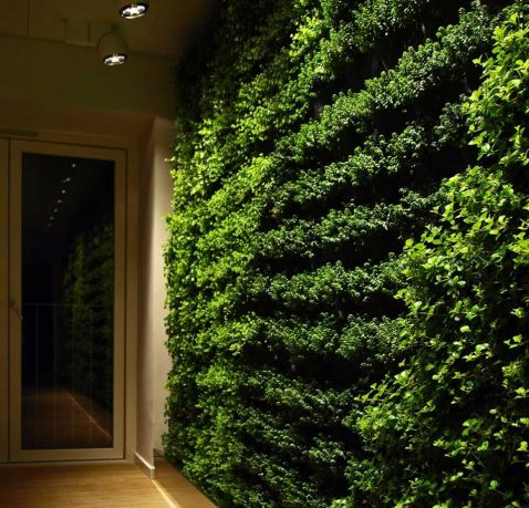 Go Green with Green Wall for Home
