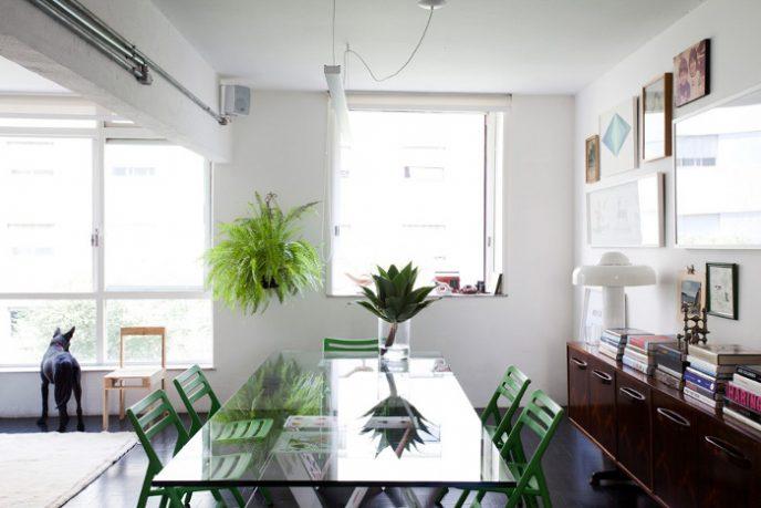 Apartment Natural Light Design Ideas