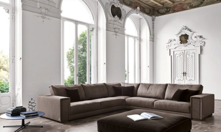 Modern and Minimalist Living Room with Brown Sofas