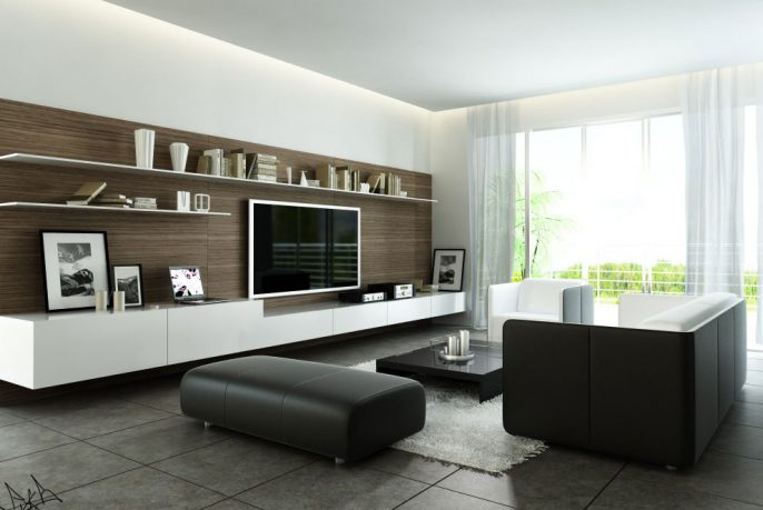 Fancy Modern Style Living Room with Black and White