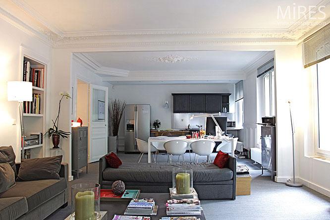 Paris Open Plan Apartment Design