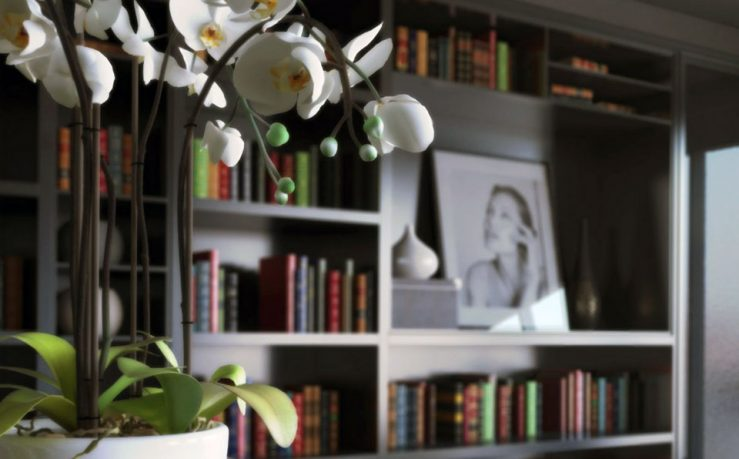 Beautiful Home Library with Flower Decor Ideas
