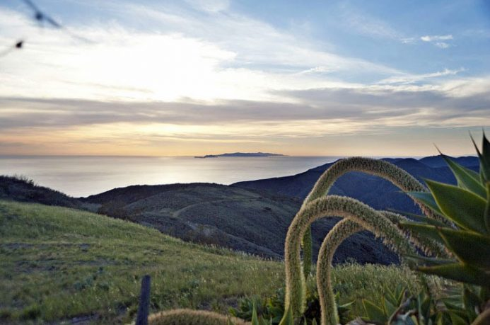 Beautiful Malibu Beach Paradise Cove View