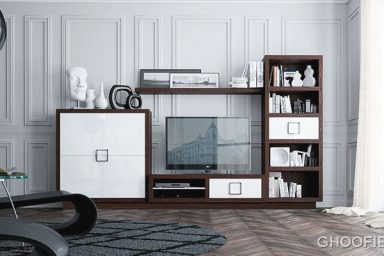 Classic Modern Furniture Living Room Design