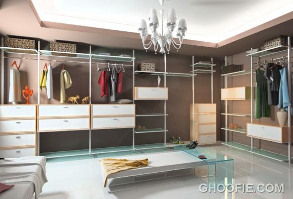 Walk in Closet in Living Area