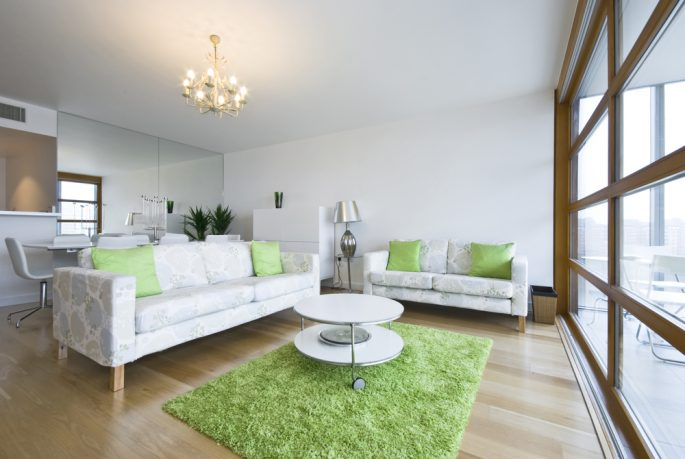 Cool green rug in living room