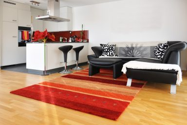 Trendy living room and kitchen