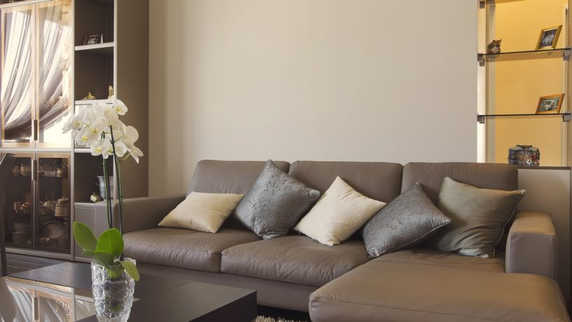 Trendy sofa with pillows