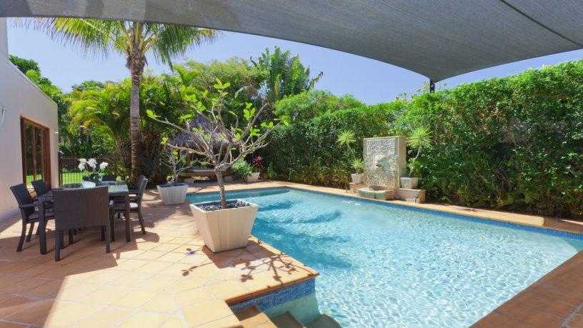 Amazing pool in backyard